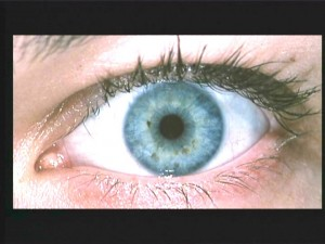 Milla Jovovich's eye. Featured in closeup in three Resident Evil movies and The Fifth Element.